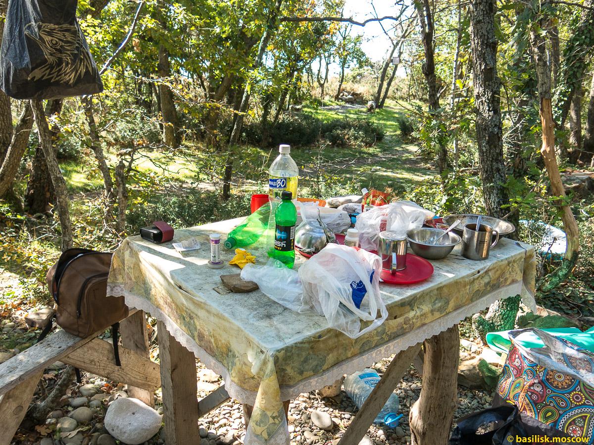 Утришские жители и места их обитания. Октябрь 2016