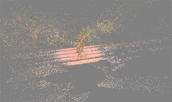 3Дэ скан