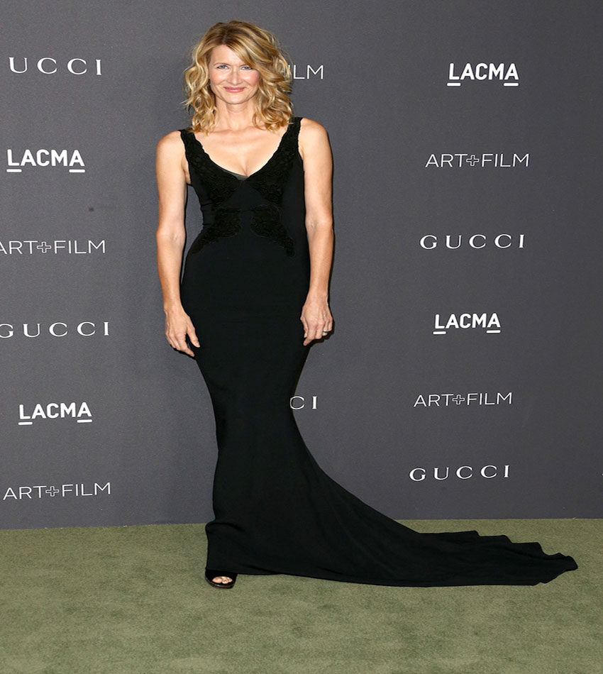 Laura Dern - LACMA Art + Film Gala 2016