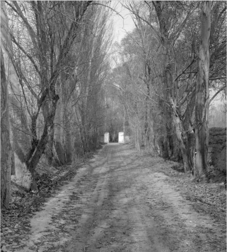Кульджа. Дорога к российскому консульству
