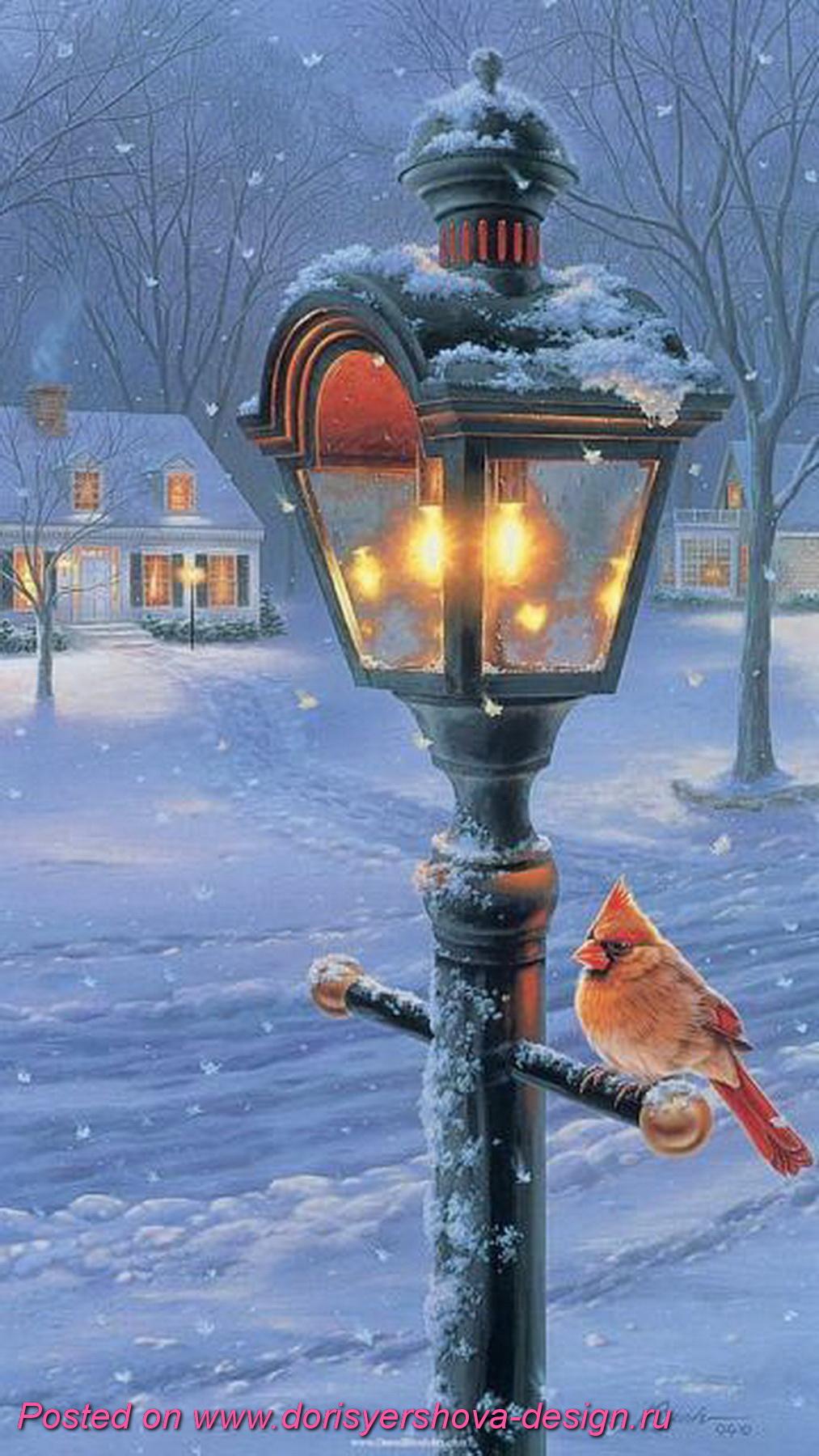 красный кардинал на фонаре, зима. рождество