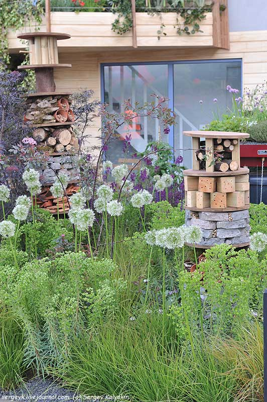 The RHS Greening Grey Britain Garden (40).jpg