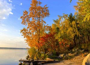 Осенний фрегат