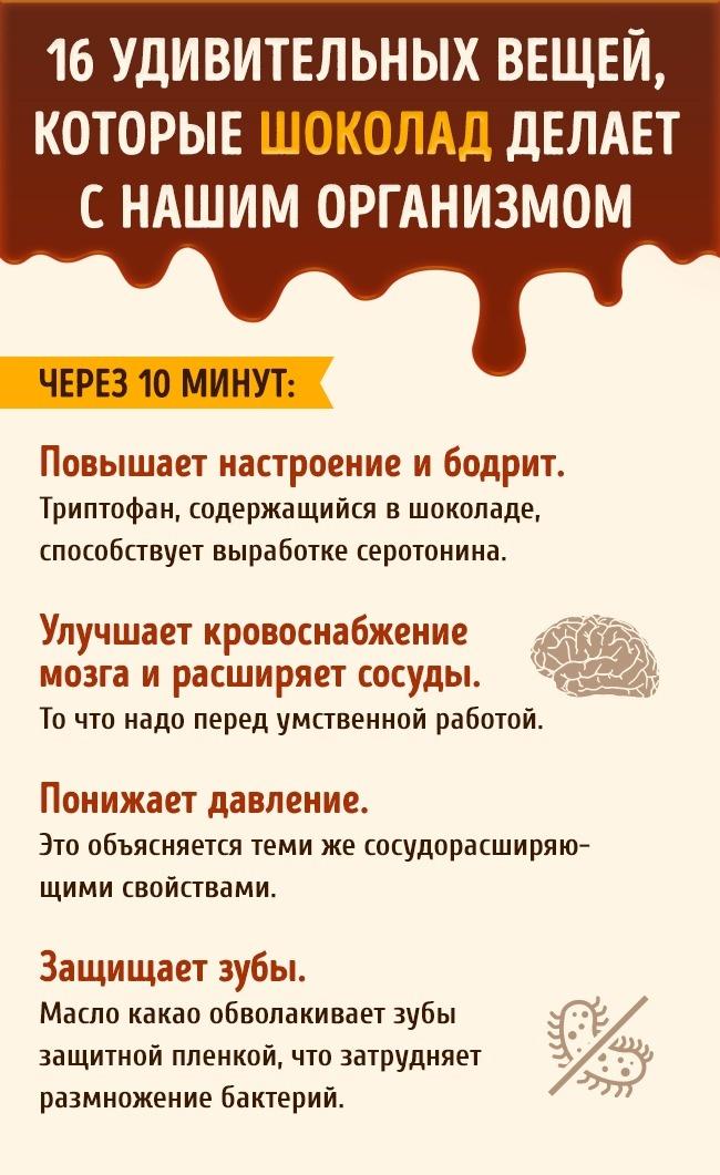 Что происходит с нашим организмом после дольки шоколада (5 фото)