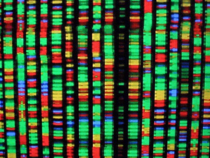 ВМВДРФ посоветовали ввести геномную регистрацию мигрантов