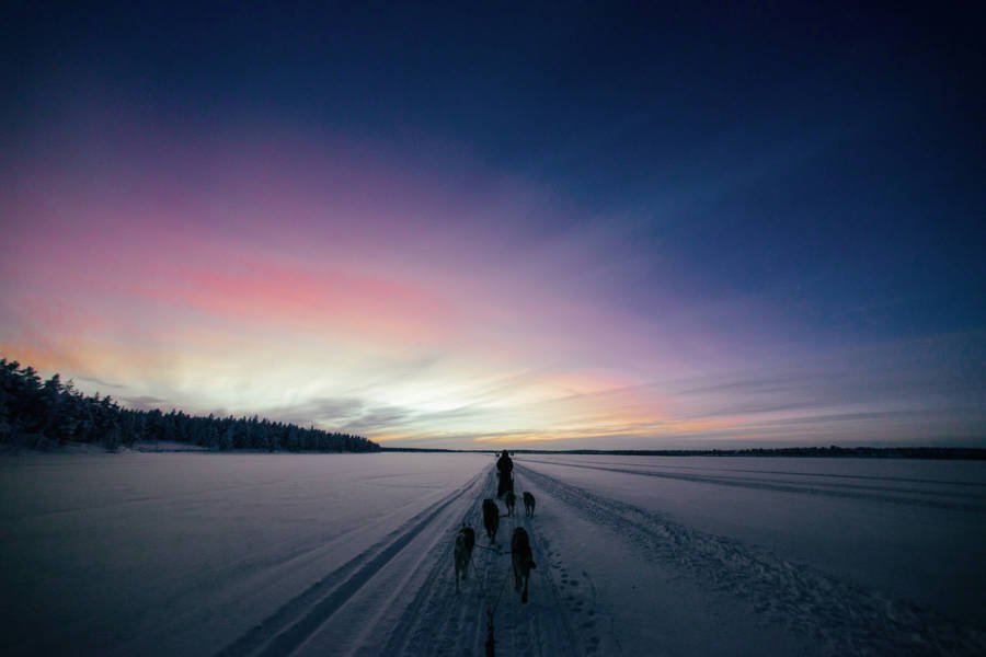 Captivating Pictures from Finnish Winter