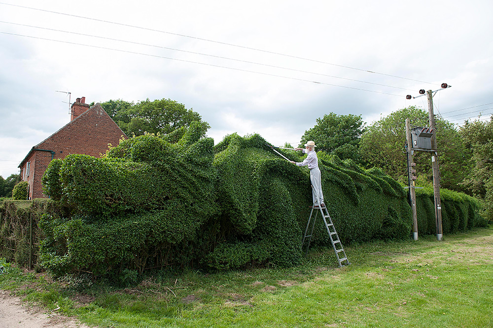 Man Spends 13 Years Transforming a Hedge into a Massive Dragon