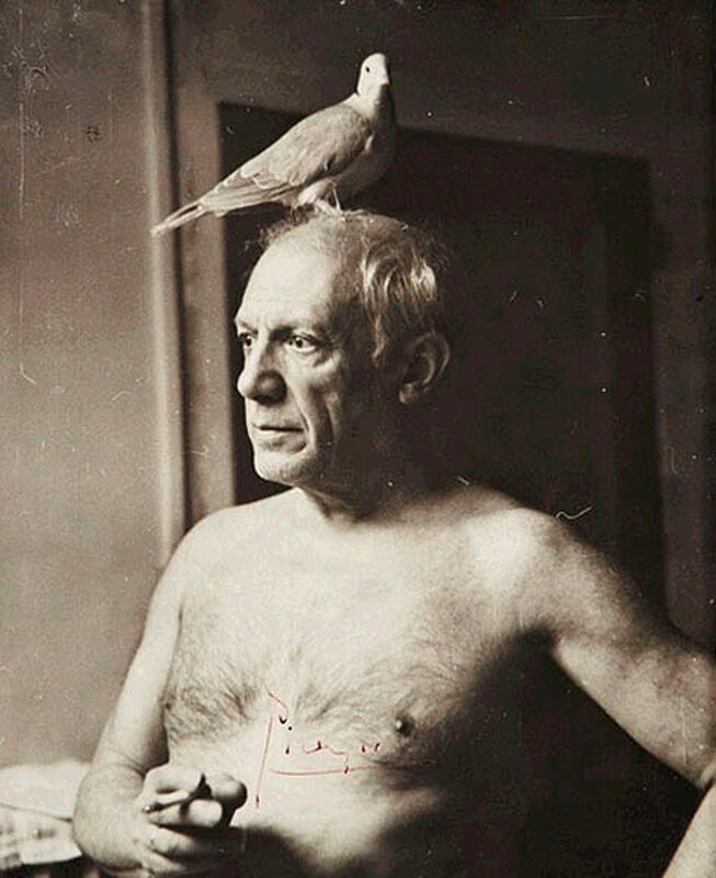 Picasso-avec-une-colombe_Paris_1945_James-Lord.jpg