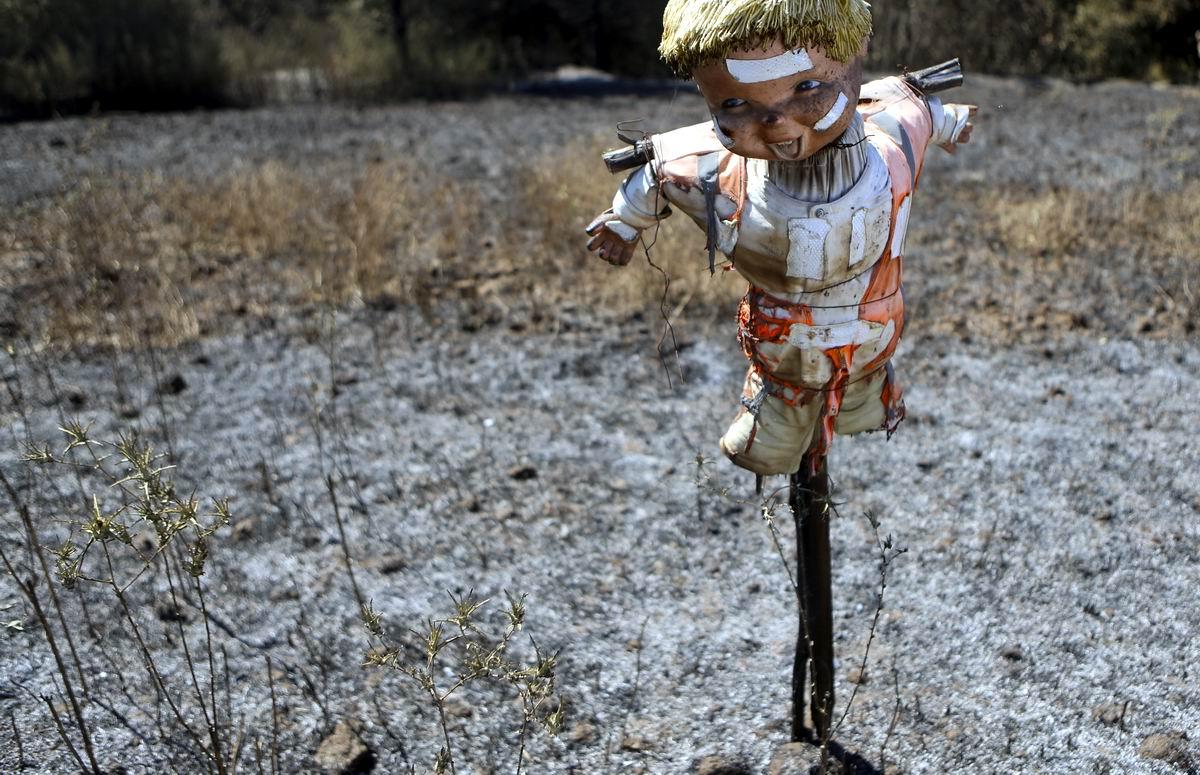 Ну что, не ждали: Кукольное огородное пугало посреди чилийских просторов