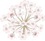 LH_Curious_Flower_014.png