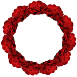 rahmen-rose-3-bd-28-9-10.png