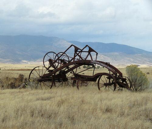 В полях северной Калифорнщины
