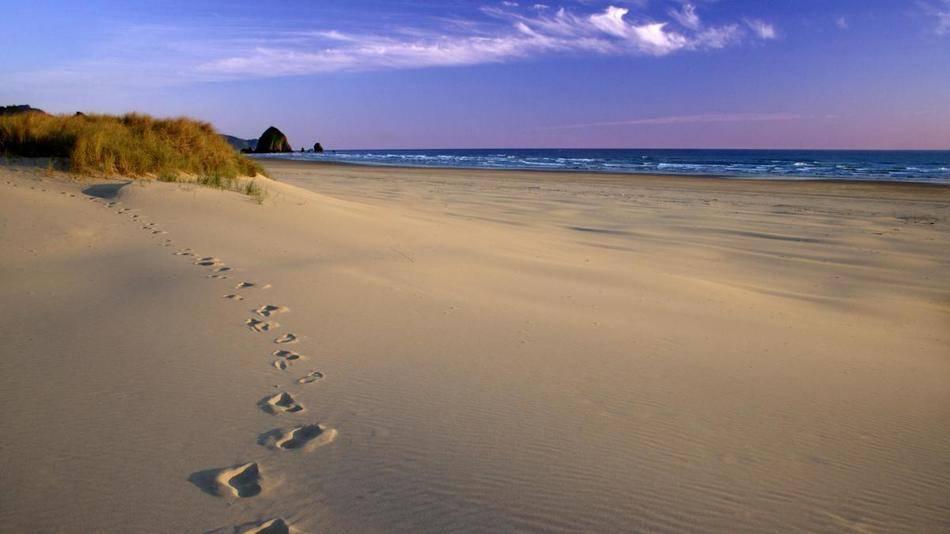 Что нужно сделать обязательно: Летом — отдохнуть на побережье Балтийского моря. Зимой —