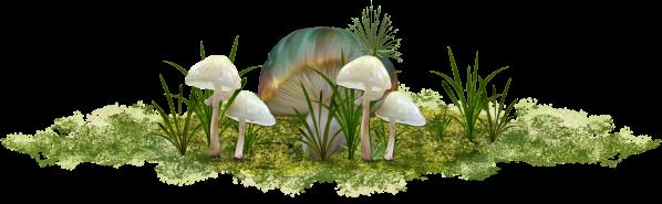 Mushrooms-GI_April'sTears.png