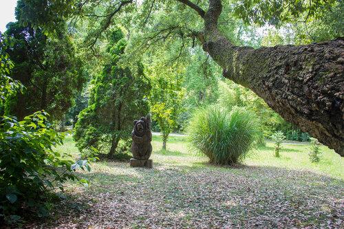 Адлер 2016. Парк южных культур