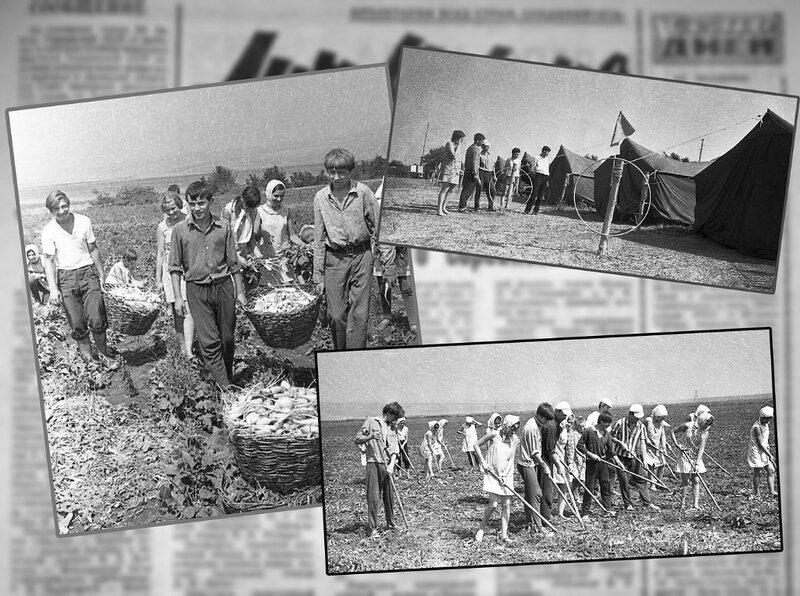 МИГ ИСТОРИИ. Школьный лагерь труда и отдыха.. Фото Николая Бродяного.jpg