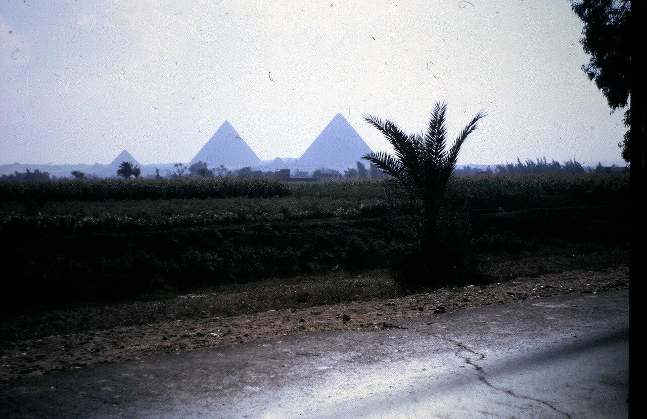 7 августа. Поездка в Гизу (Египет)