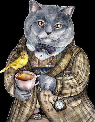 кошки-класс-3.png