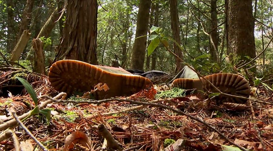 Другое название этой местности у подножия горы Фудзи – лес самоубийц. В один год лет 10 назад там бы