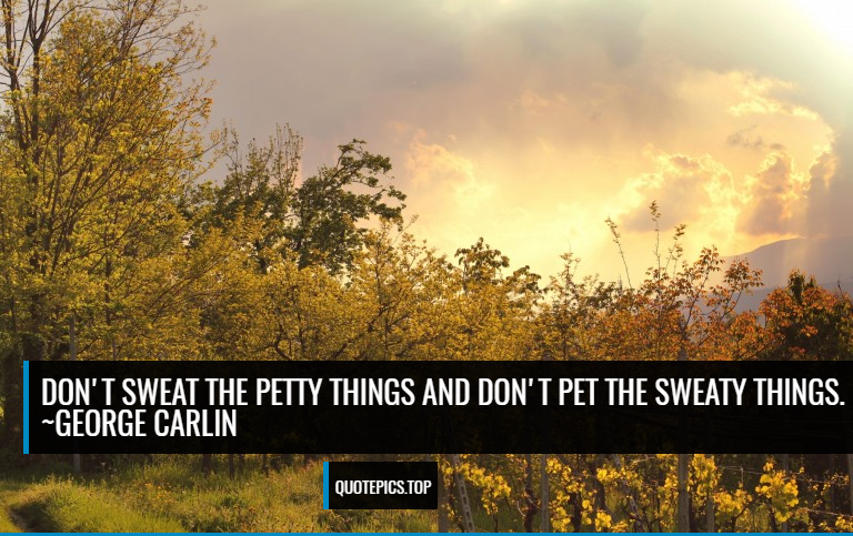 Don't sweat the petty things and don't pet the sweaty things. ~George Carlin