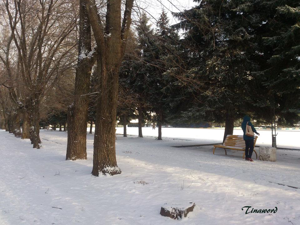 в-парке-1.jpg