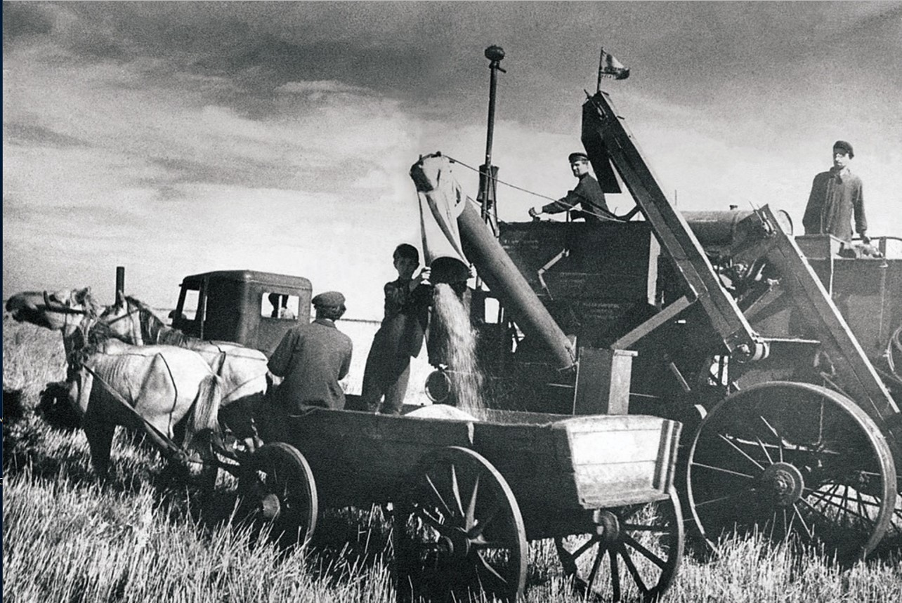 Уборка зерновых. Комбайн «Сталинец-6» в поле