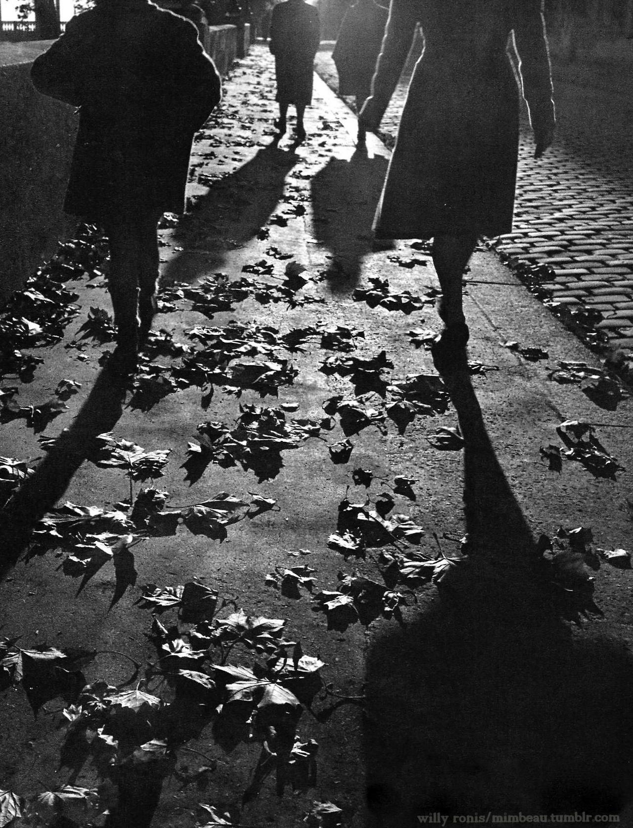 1950. Тротуары в осеннем Париже