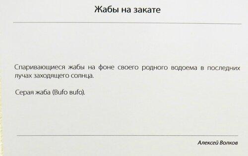 https://img-fotki.yandex.ru/get/196161/140132613.52e/0_214474_a7e33abe_L.jpg