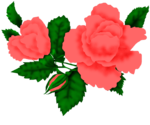 SSS_Roses_Element-10.png