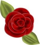 SSS_Roses_Element-24.png