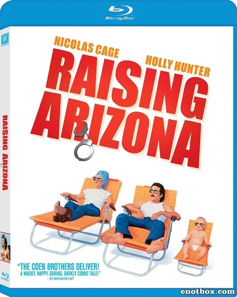 Воспитание Аризоны / Воспитывая Аризону / Raising Arizona (1987/BDRip/HDRip)
