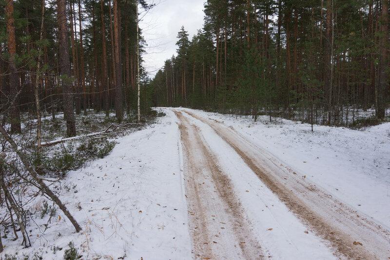 дорога на киперорт зимой