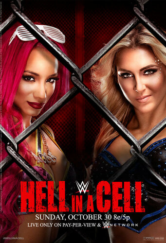Post image of WWE Hell in a Cell 2016