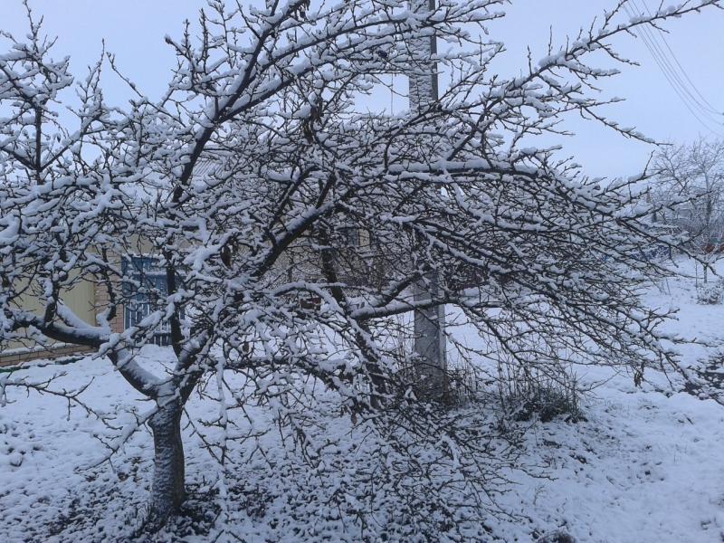 Снег улица