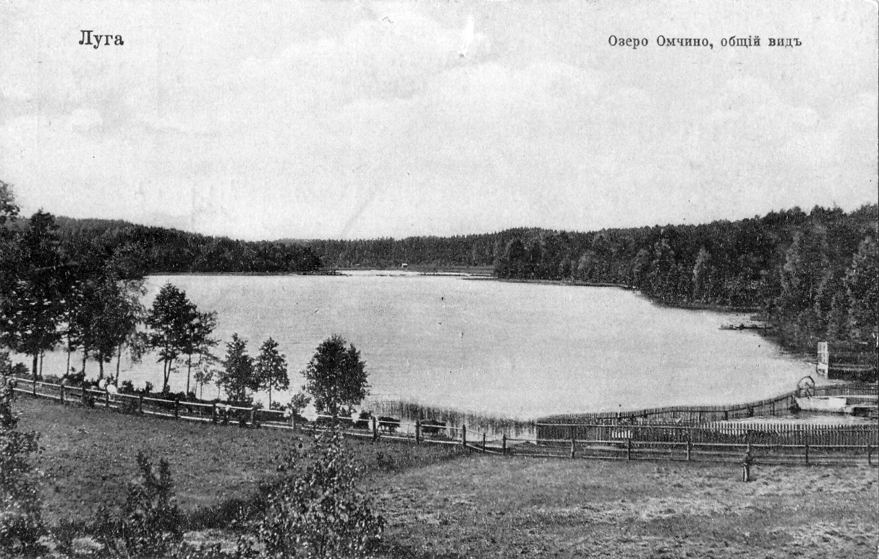 Окрестности Луги. Озеро Омчино. Общий вид