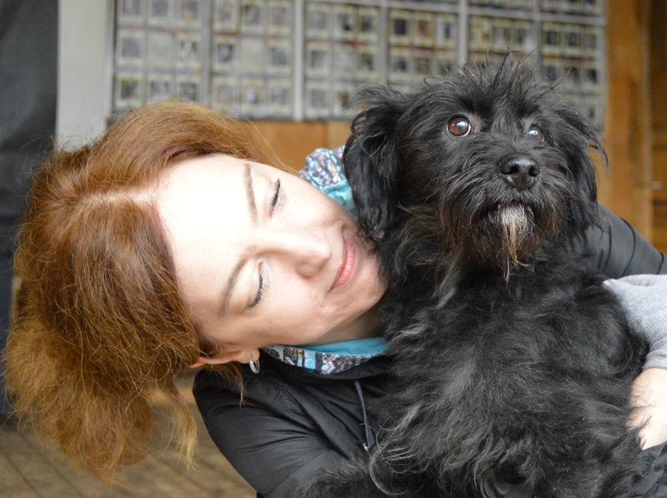 Мартин собака из приюта догпорт
