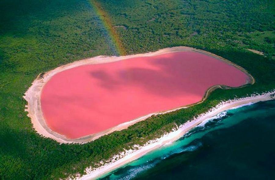 Розовое озеро Хиллиер, Австралия.