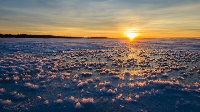 Такой океанический луг можно наблюдать вцентральной части Северного Ледовитого океана. Ледяные скул