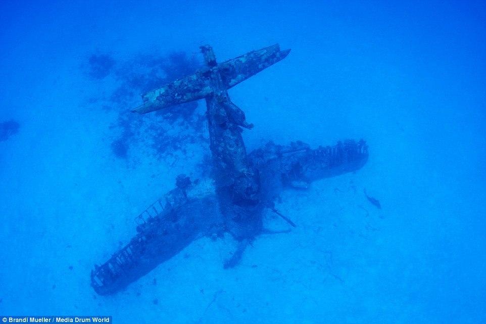 Подводное кладбище самолетов (10 фото)