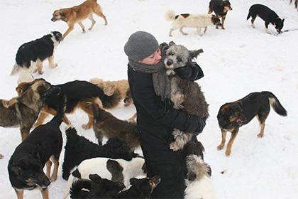 Законодательный проект обуполномоченном позащите животных внесен в Государственную думу