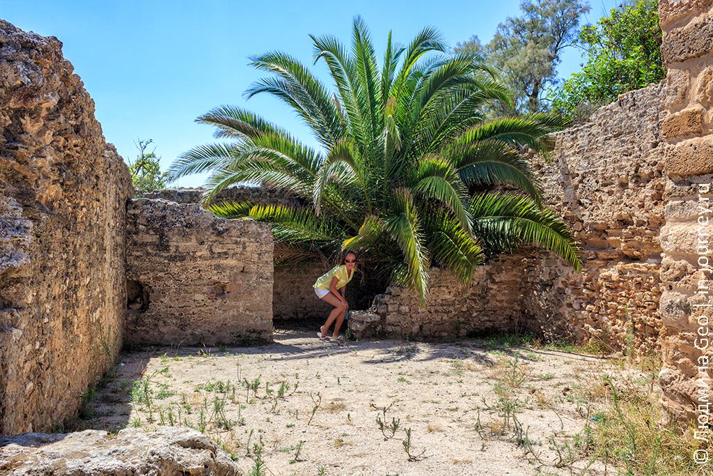 Тунис отдых Карфаген