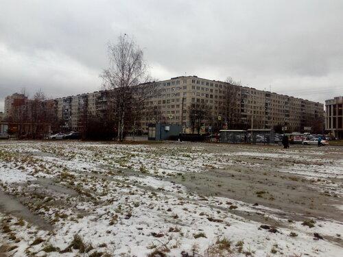 Будапештская ул. 74к1