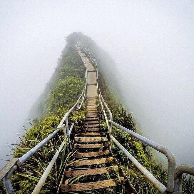 Тропа Хайку. Гавайи