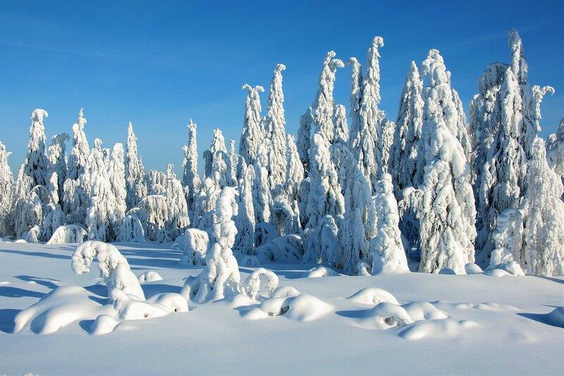 Поклоны зимушке зиме