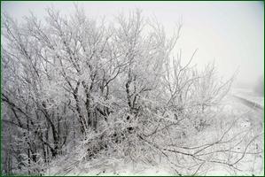http://img-fotki.yandex.ru/get/196221/15842935.40c/0_f120e_9e8a5c79_orig.jpg