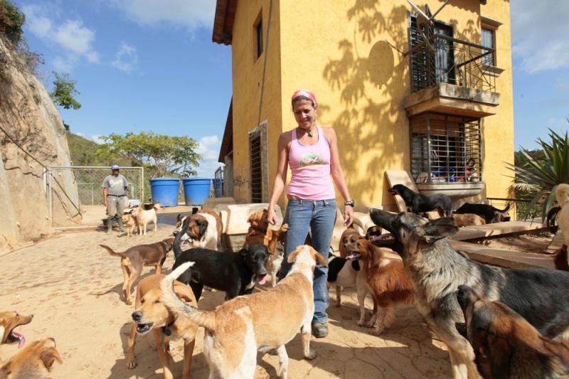 Esperanza Animal. Приют для собак в Каракасе
