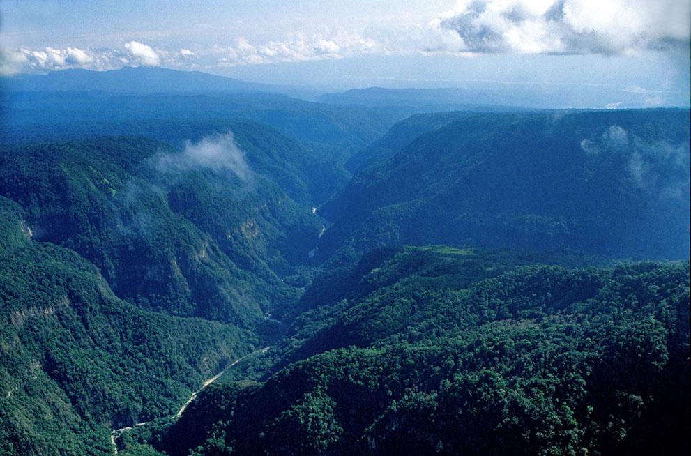17. Вид с воздуха на долину реки Энее, где живет перуанское племя ашанинка. (© Angela Cumberbir