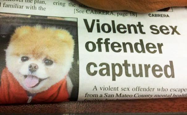 «Двое жестоких преступников попали на кадры видеозаписи».