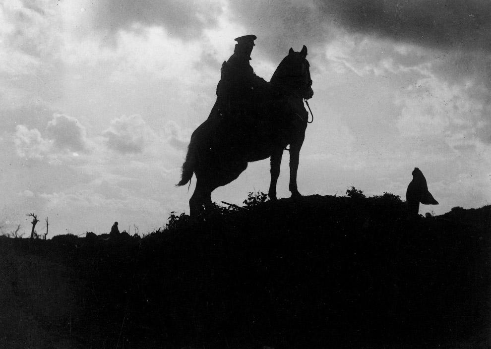 Немецкие солдаты, лошадь и трофейный пулемет «Максим» M1910. (Фото Brett Butterworth):