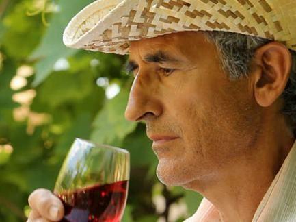 Компании, производящие вино изсобственных материалов, освободили отлицензии наоптовую торговлю